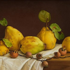 Still life with quinces and medlars