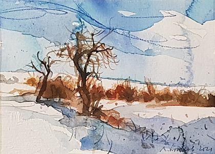 Зима край Градина